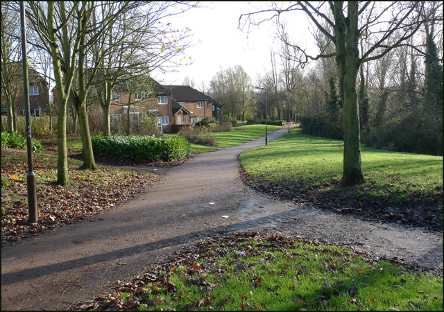 Houses at the edge of Eaglestone Local Park
