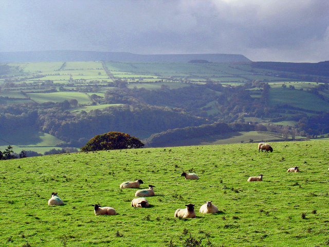 Hay Bluff across the Golden Valley from Dorstone Hill