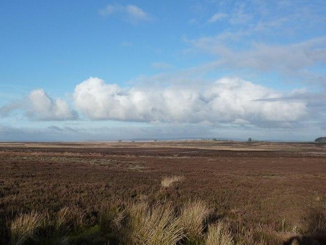 Looking north west across East Moor
