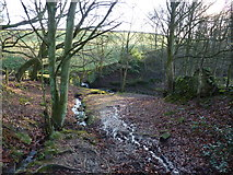 SK2764 : Stream down from Sitch Plantation by Peter Barr