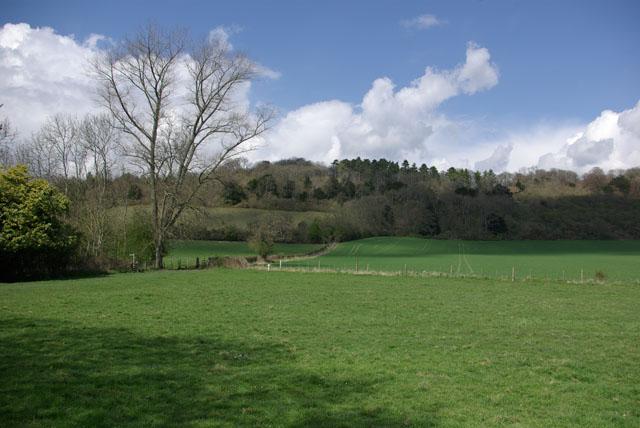 Bridleway from Kemp's Farm