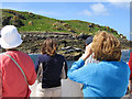 SV9413 : Seal watchers at the Eastern Isles, Scilly by John Rostron