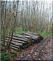 TR1959 : Log pile, Trenleypark Wood by N Chadwick