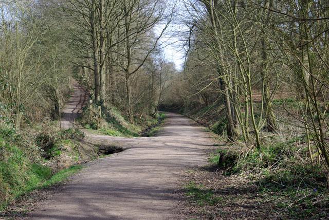 Path junction, Worth Way
