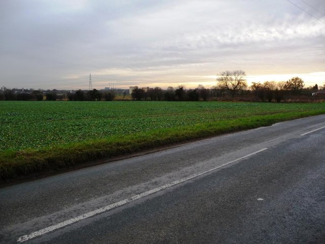 No hedge, wall or fence on the south side of Sutton Lane