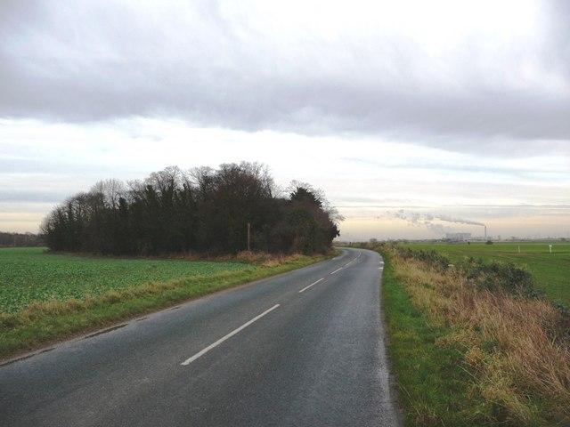 Looking east along Birkin Lane