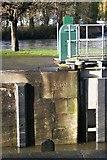 SU5980 : Date by the gate by Bill Nicholls