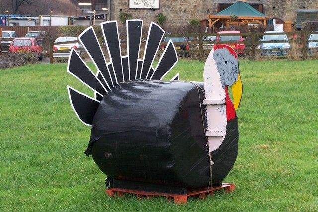 Giant Black Turkey at Blackers Hall Farm Shop, near Crigglestone