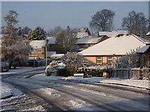 TM0855 : Hurstlea Road by Andrew Hill