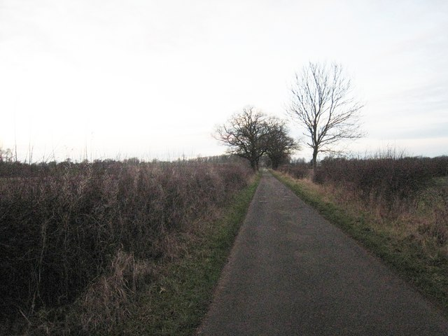 The approach road to Holme House
