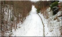 J3773 : December snow, Belfast 2009-8 by Albert Bridge
