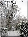 ST5677 : Footpath, Westbury-on-Trym by George Evans