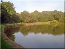 SK4564 : Miller's Pond dam - 1 by Trevor Rickard