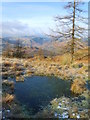 NY3302 : Frozen Tarnlet, Black Fell by Michael Graham
