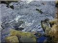 SN8078 : Awkward stepping stone by Nigel Brown