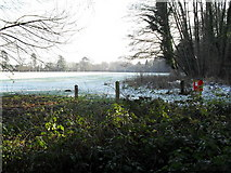 SU9948 : A chilly scene looking towards the football pitches in the recreation ground in Shalford Road by Basher Eyre