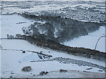 NZ5712 : Newton Wood from Roseberry Topping by Philip Barker