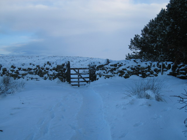 The gate onto Newton Moor