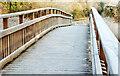 J3369 : River Lagan footbridge, Belfast by Albert Bridge