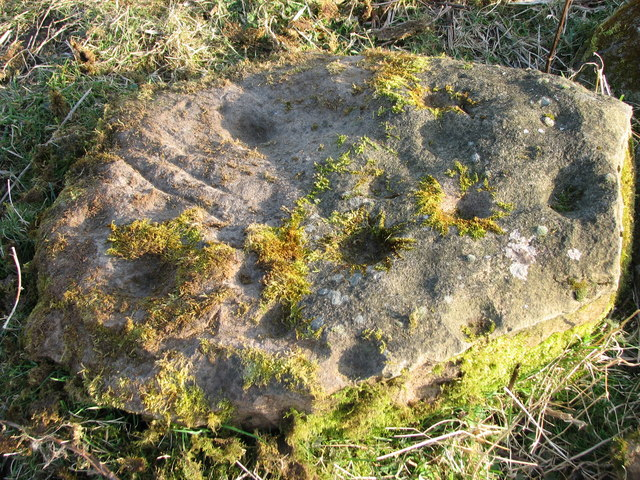 Cup marked stone at Mulchaich