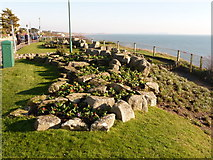 SZ0990 : Bournemouth: rockery on the East Cliff by Chris Downer