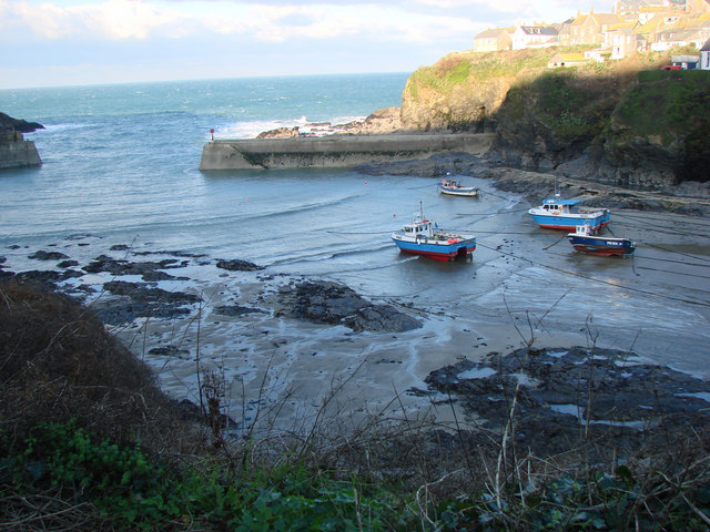 View of the Harbour from Roscarrock Hill, Port Isaac
