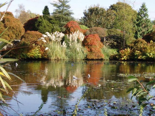 Autumn at Wakehurst Place