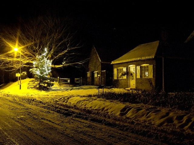 Christmas Tree, Old Bolingbroke