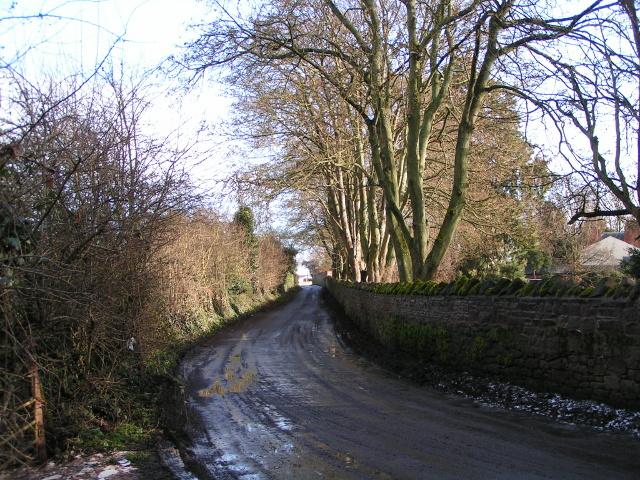 Huntington Lane heading east