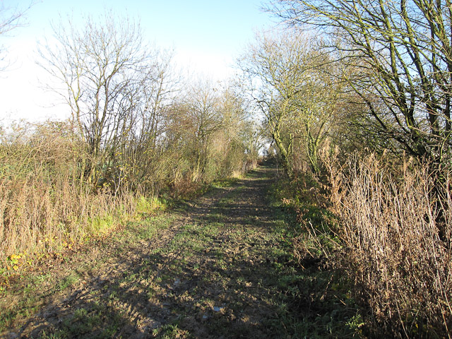 Byway to Carlton and Willingham Green