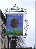 SO8171 : The Hollybush revised sign, 54 Mitton Street by P L Chadwick