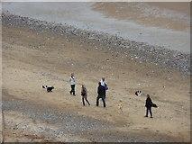 TG2142 : Dog Walkers meet on the beach, Cromer by Christine Matthews