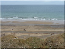TG2142 : Cromer beach from the cliff top by Christine Matthews
