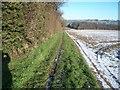SP1540 : Field edge path by Michael Dibb
