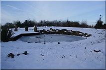 SD7513 : The Millennium Garden, Affetside by Bill Boaden