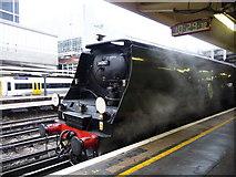 TQ2878 : Tangmere Engine at Victoria Station, London SW1 by Christine Matthews