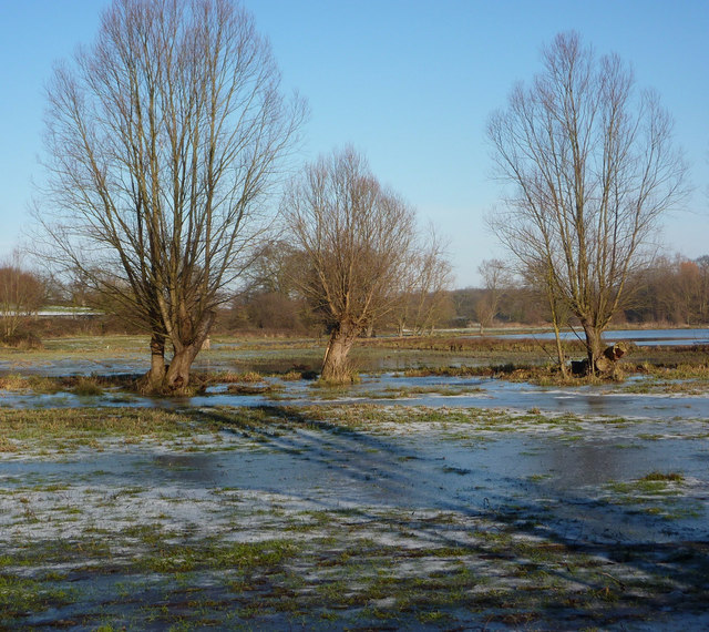 Icy meadow near The Mere