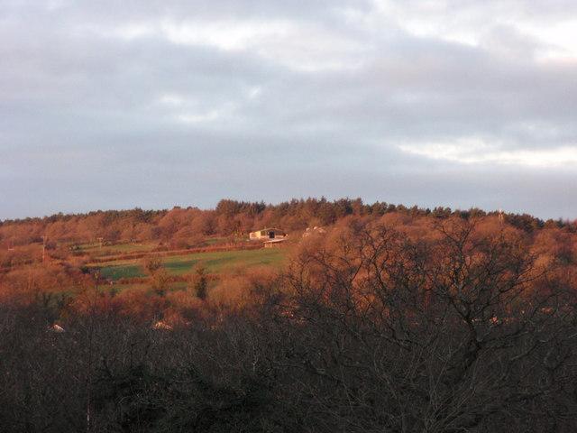 Pen Y Lan Farm
