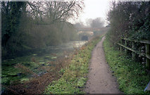SU7151 : Greywell Tunnel, Basingstoke Canal by Dr Neil Clifton