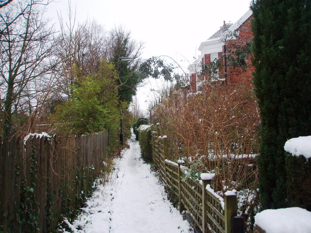Dilston Terrace