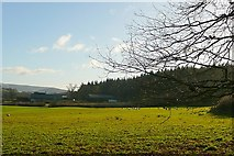 SO0153 : Dolyrerw Farm by Graham Horn