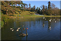 TQ1263 : The Lake, Claremont Landscape Garden by Ian Capper