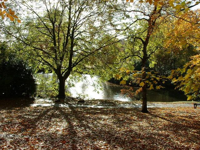 Moseley New Pool in Swanshurst Park