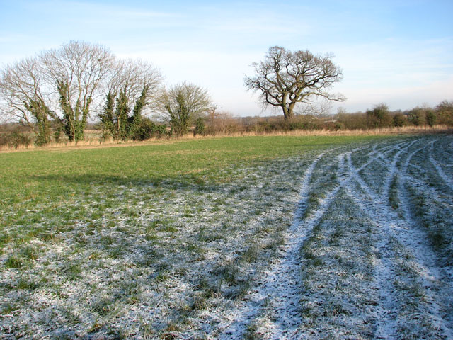 A frosty field west of Fundenhall