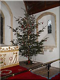 SU8518 : Festive tree within St Mary, Bepton by Basher Eyre