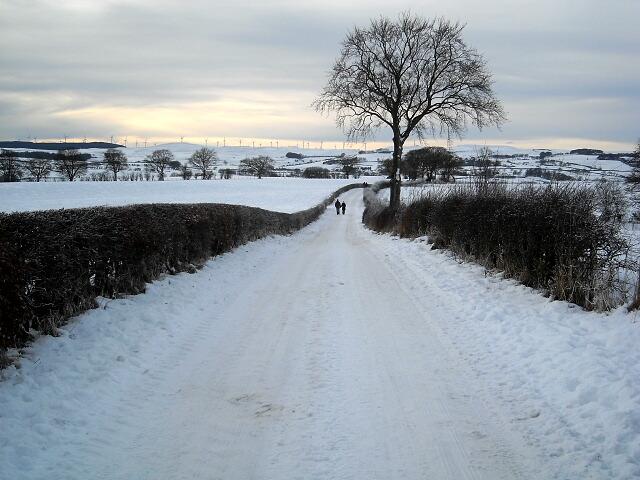 Jackton Road Under Snow