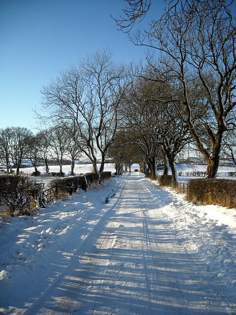 Snow and Ice Covered Road