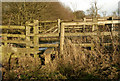 SP5461 : Stile on footpath east of Staverton by Andy F