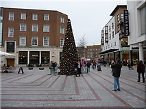 SX9292 : Exeter : Bedford Street & Christmas Tree by Lewis Clarke