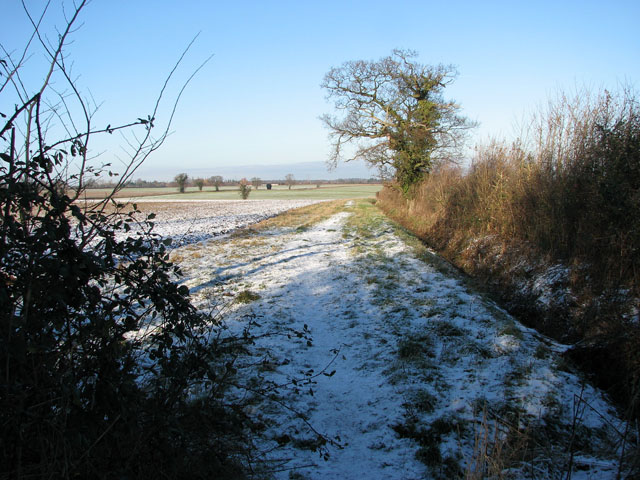 Wintry path to Transport Lane